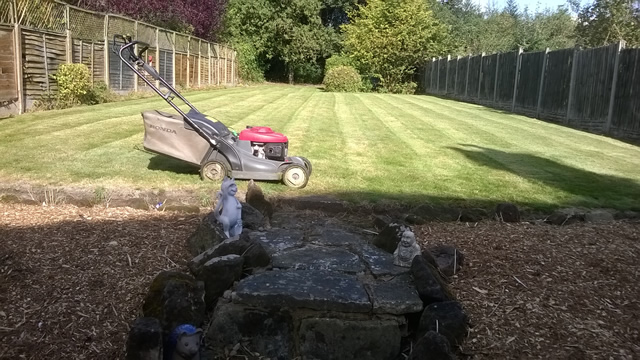 garden-services-brean-burnham-on-sea (22)